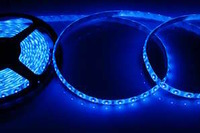 LED-лента влагозащ. ip65 8 мм smd 3528 синяя (цена указана за 1 м)