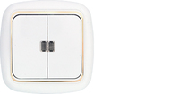 Выключатель 2 кл. с подсветкой С5 10-207 з