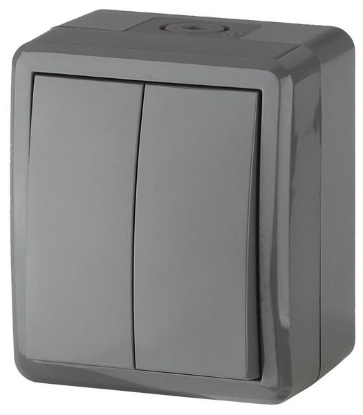 Выключатель двухклавишный серый IP54